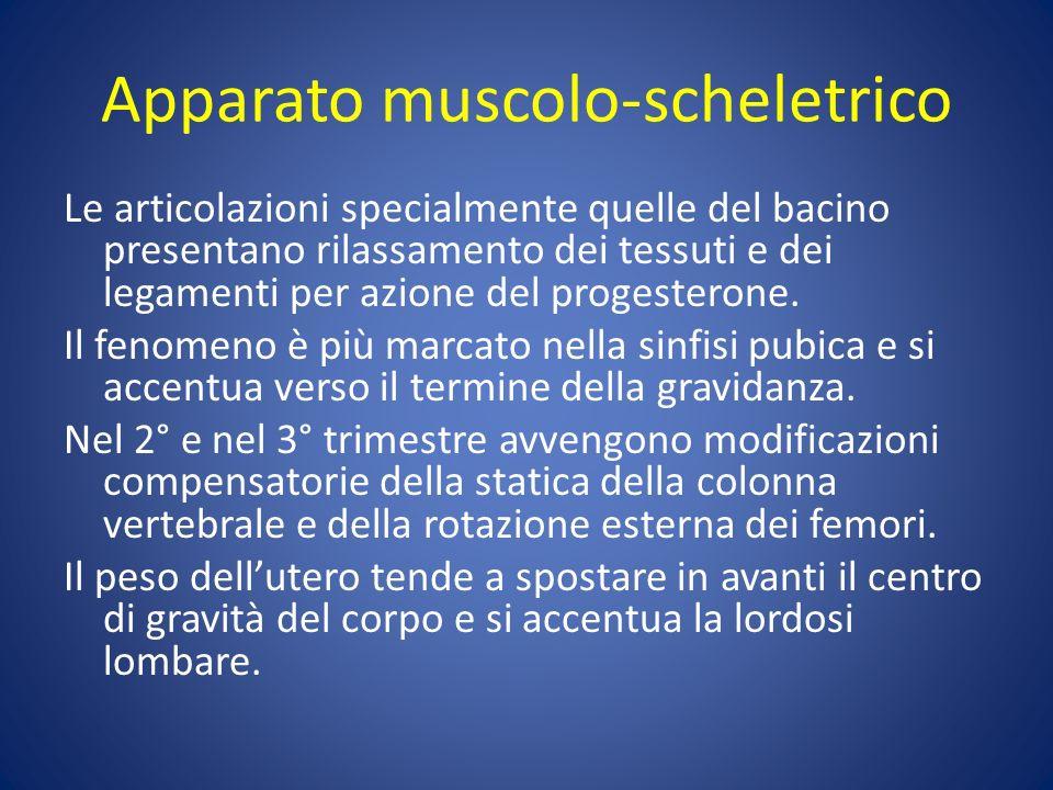 Apparato muscolo-scheletrico Le articolazioni specialmente quelle del bacino presentano rilassamento dei tessuti e dei legamenti per azione del progesterone.