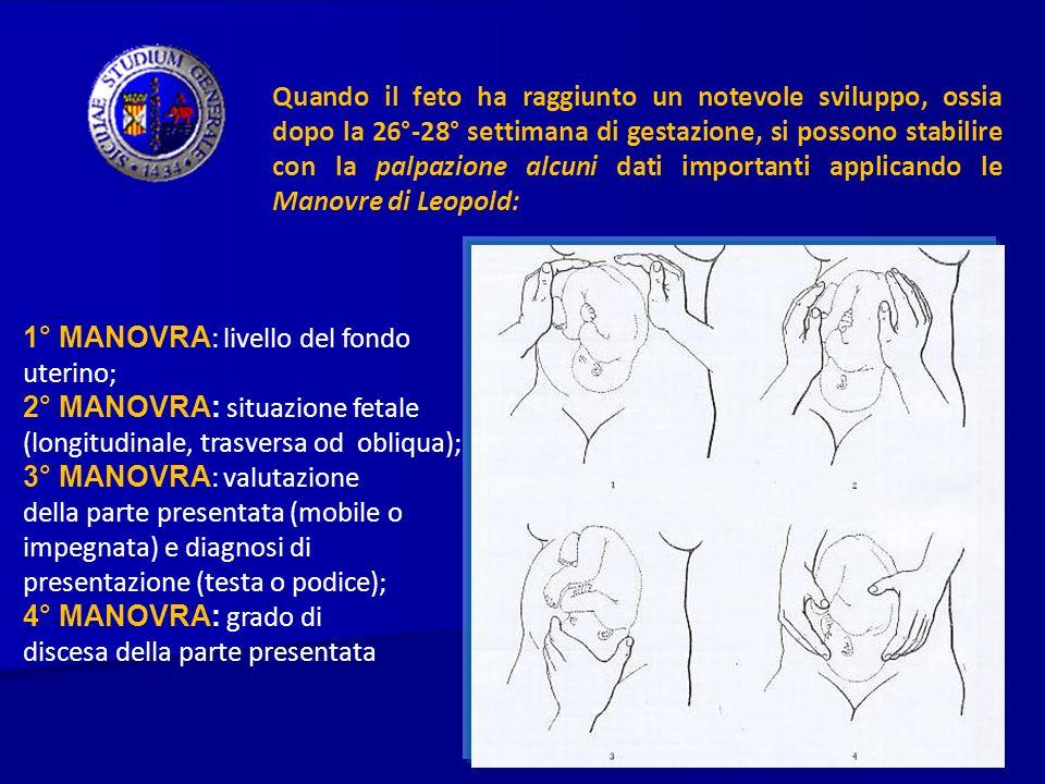 Quando il feto ha raggiunto un notevole sviluppo, ossia dopo la 26°-28° settimana di gestazione, si possono stabilire con la palpazione alcuni dati im