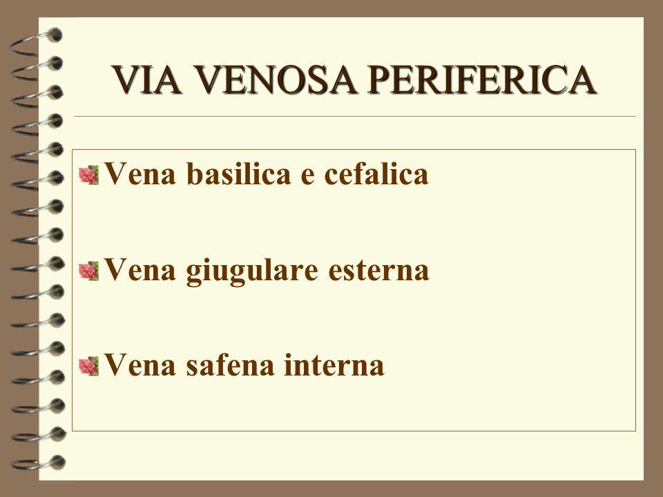 VIA VENOSA PERIFERICA Vena basilica e cefalica Vena giugulare esterna Vena safena interna