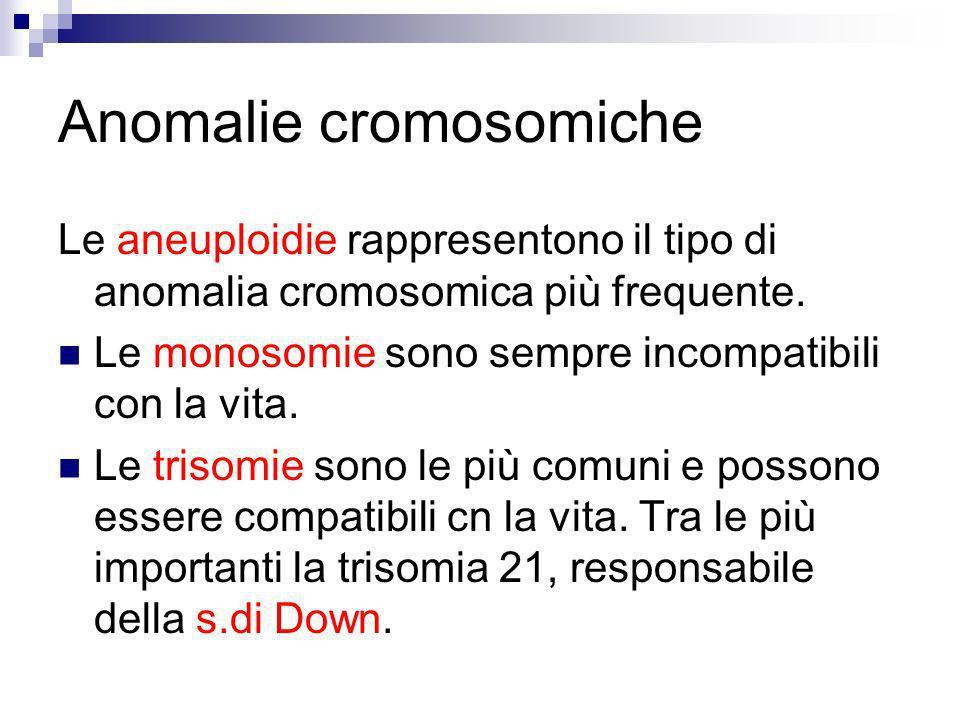Anomalie cromosomiche Le aneuploidie rappresentono il tipo di anomalia cromosomica più frequente. Le monosomie sono sempre incompatibili con la vita.