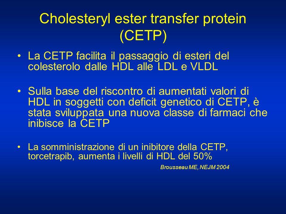 Cholesteryl ester transfer protein (CETP) La CETP facilita il passaggio di esteri del colesterolo dalle HDL alle LDL e VLDL Sulla base del riscontro d