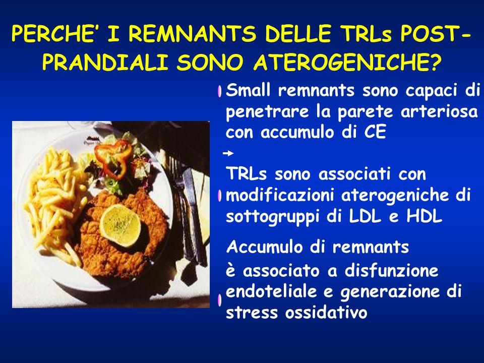 PERCHE I REMNANTS DELLE TRLs POST- PRANDIALI SONO ATEROGENICHE? Small remnants sono capaci di penetrare la parete arteriosa con accumulo di CE TRLs so