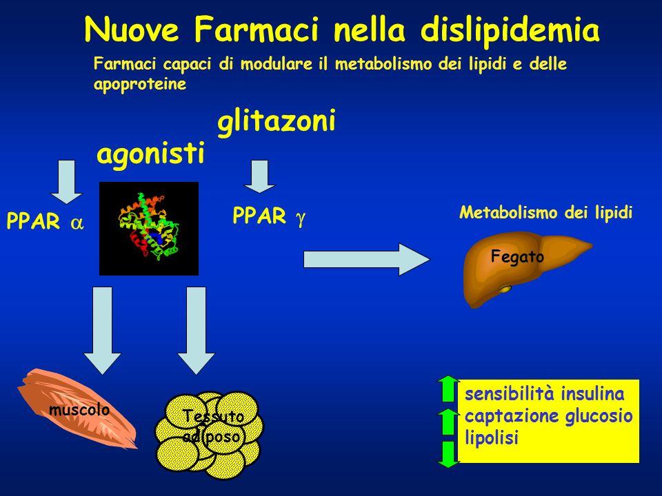 Nuove Farmaci nella dislipidemia glitazoni PPAR muscolo Tessuto adiposo sensibilità insulina captazione glucosio lipolisi Farmaci capaci di modulare i