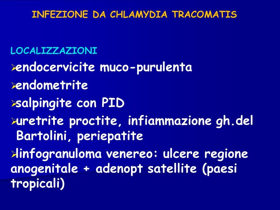 INFEZIONE DA CHLAMYDIA TRACOMATIS LOCALIZZAZIONI endocervicite muco-purulenta endometrite salpingite con PID uretrite proctite, infiammazione gh.del B