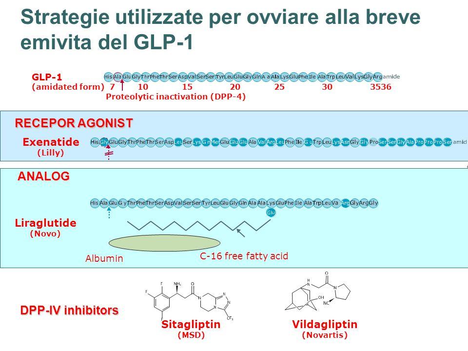 DPP-IV inhibitors Vildagliptin (Novartis) Sitagliptin (MSD) Exenatide (Lilly) RECEPOR AGONIST Albumin C-16 free fatty acid Liraglutide (Novo) ANALOG S