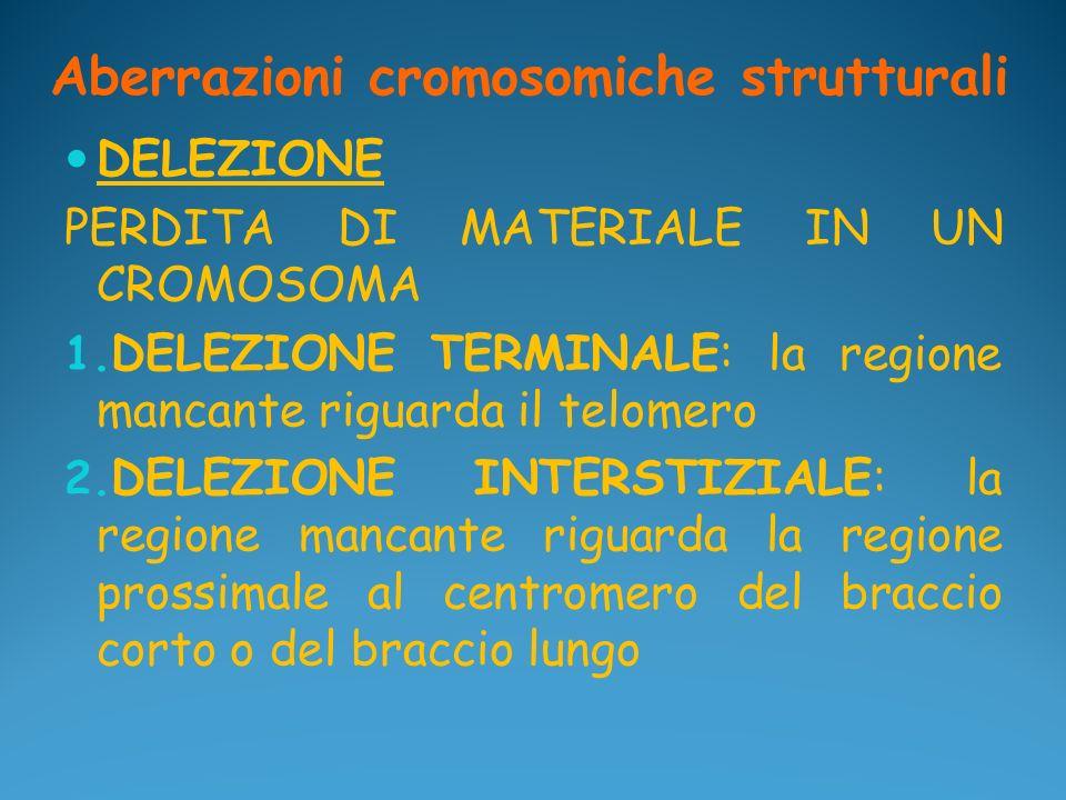 Aberrazioni cromosomiche strutturali DELEZIONE PERDITA DI MATERIALE IN UN CROMOSOMA 1. DELEZIONE TERMINALE: la regione mancante riguarda il telomero 2
