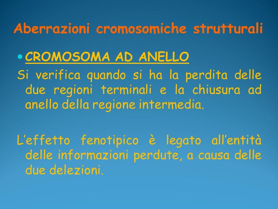 Aberrazioni cromosomiche strutturali CROMOSOMA AD ANELLO Si verifica quando si ha la perdita delle due regioni terminali e la chiusura ad anello della