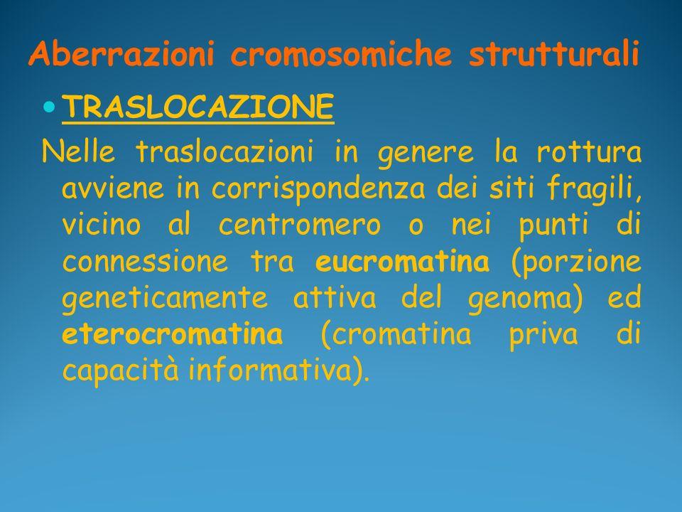 Aberrazioni cromosomiche strutturali TRASLOCAZIONE Nelle traslocazioni in genere la rottura avviene in corrispondenza dei siti fragili, vicino al cent