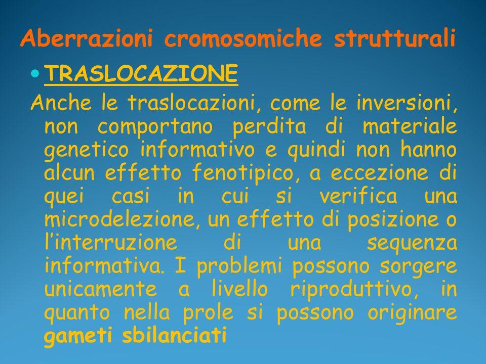 Aberrazioni cromosomiche strutturali TRASLOCAZIONE Anche le traslocazioni, come le inversioni, non comportano perdita di materiale genetico informativ