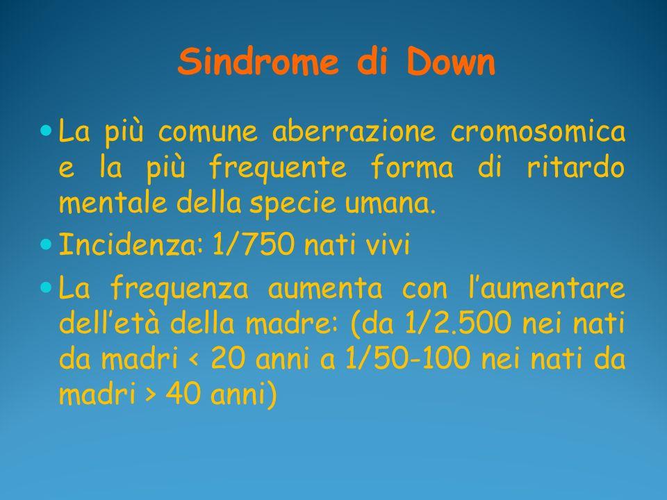 Sindrome di Down La più comune aberrazione cromosomica e la più frequente forma di ritardo mentale della specie umana. Incidenza: 1/750 nati vivi La f