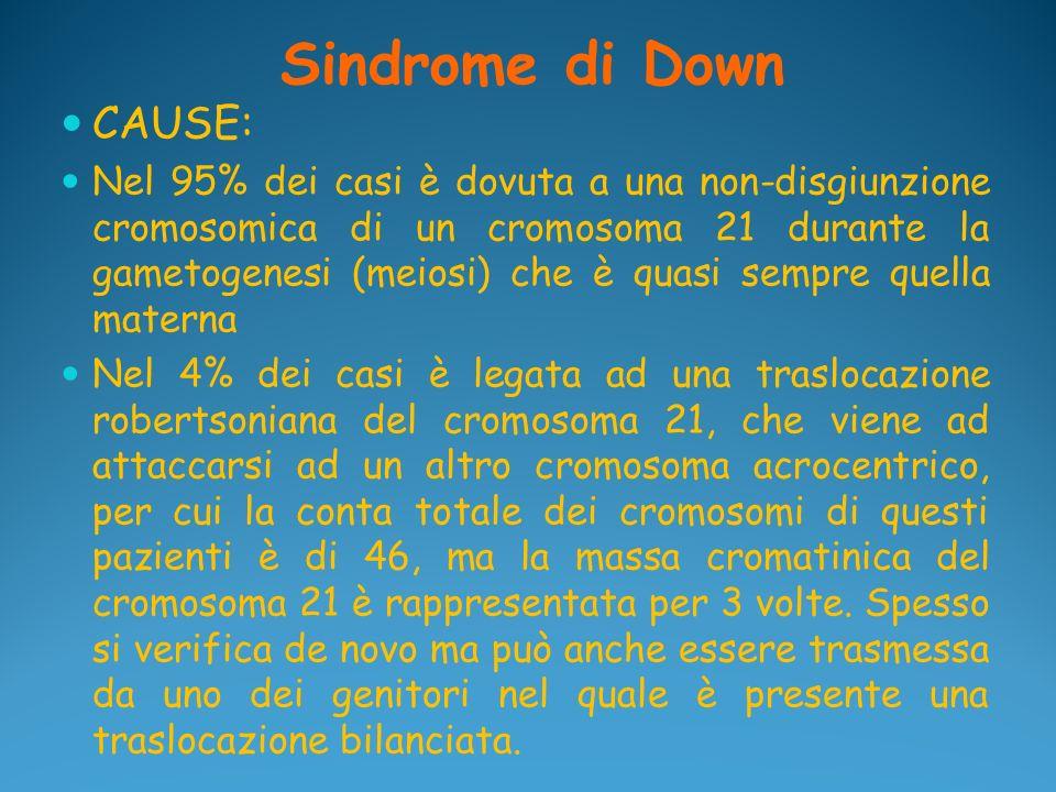 Sindrome di Down CAUSE: Nel 95% dei casi è dovuta a una non-disgiunzione cromosomica di un cromosoma 21 durante la gametogenesi (meiosi) che è quasi s