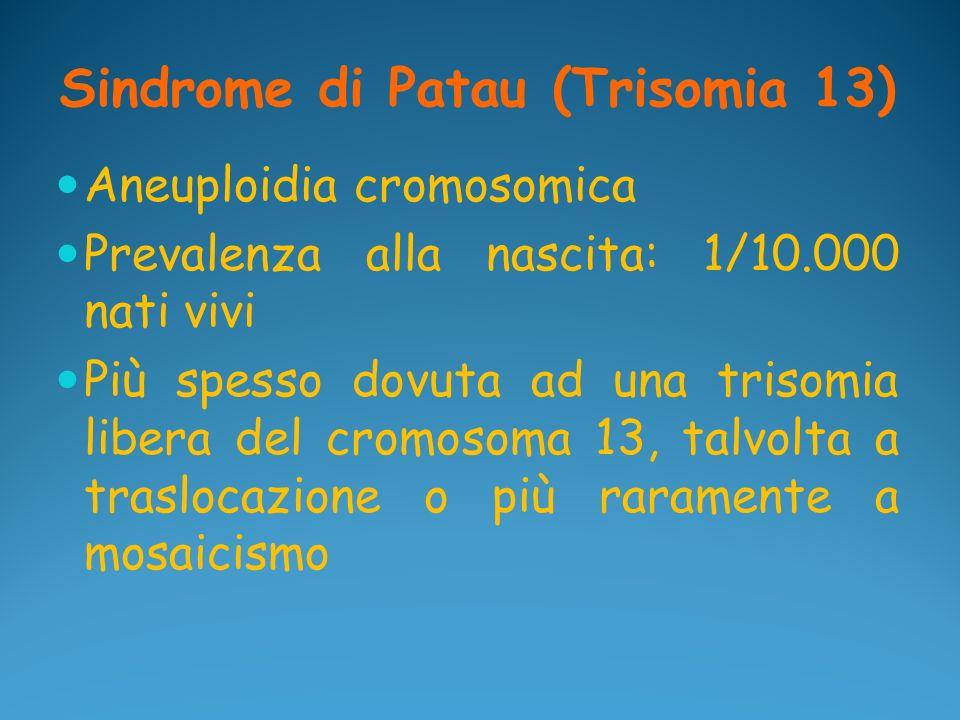 Sindrome di Patau (Trisomia 13) Aneuploidia cromosomica Prevalenza alla nascita: 1/10.000 nati vivi Più spesso dovuta ad una trisomia libera del cromo