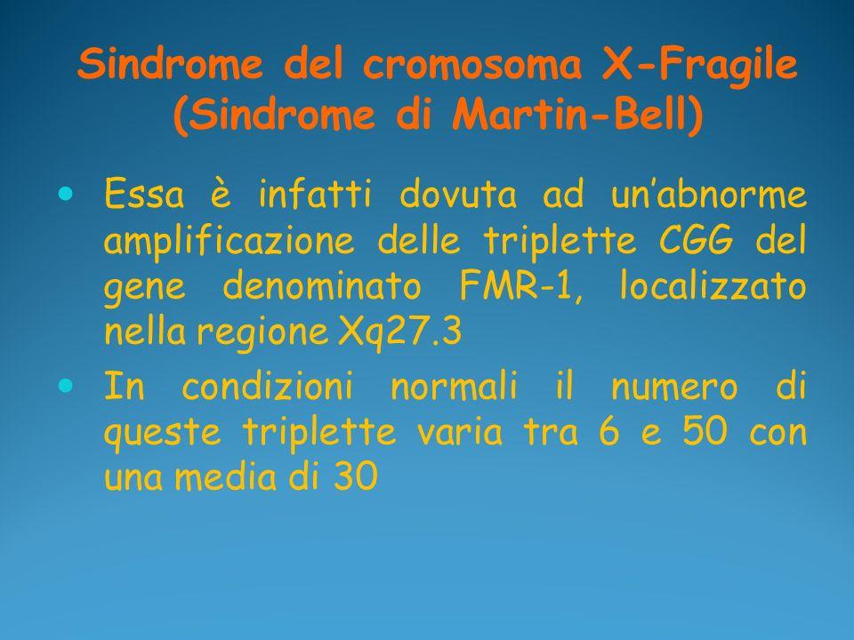 Sindrome del cromosoma X-Fragile (Sindrome di Martin-Bell) Essa è infatti dovuta ad unabnorme amplificazione delle triplette CGG del gene denominato F