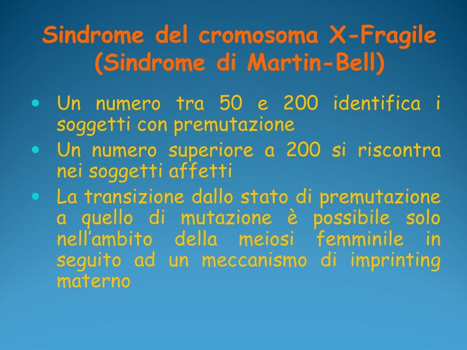 Sindrome del cromosoma X-Fragile (Sindrome di Martin-Bell) Un numero tra 50 e 200 identifica i soggetti con premutazione Un numero superiore a 200 si