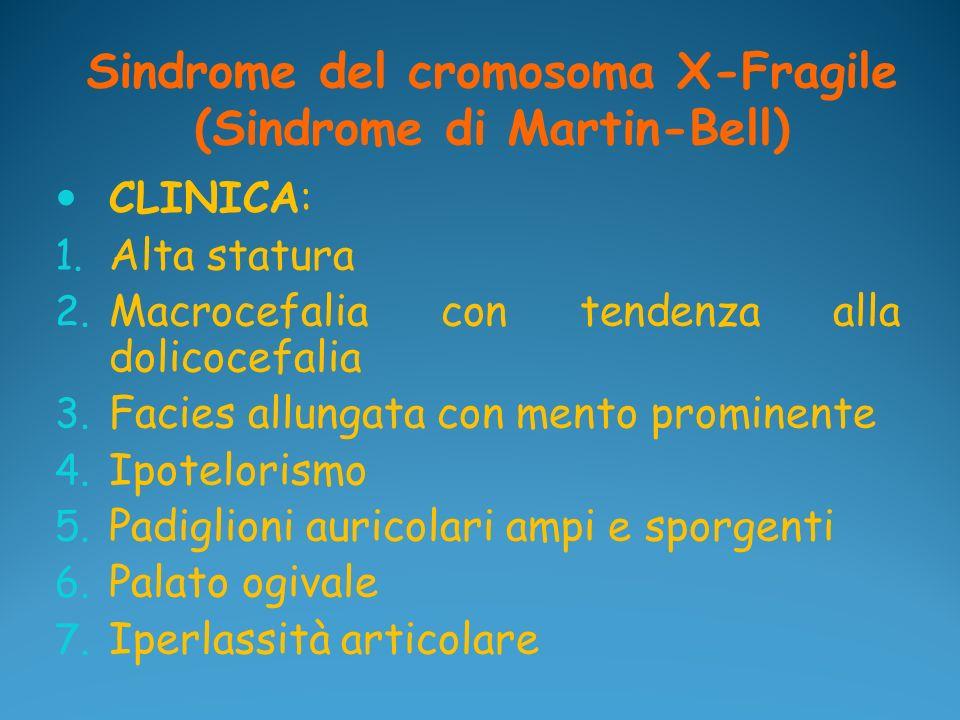 Sindrome del cromosoma X-Fragile (Sindrome di Martin-Bell) CLINICA: 1. Alta statura 2. Macrocefalia con tendenza alla dolicocefalia 3. Facies allungat