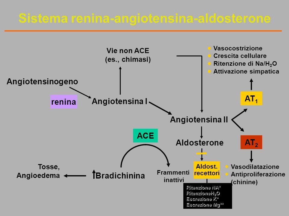 Angiotensinogeno Vasocostrizione Crescita cellulare Ritenzione di Na/H 2 O Attivazione simpatica renina Angiotensina I Angiotensina II ACE Tosse, Angioedema Bradichinina Frammenti inattivi Vasodilatazione Antiproliferazione (chinine) Aldosterone AT 2 AT 1 Vie non ACE (es., chimasi) Sistema renina-angiotensina-aldosterone Ritenzione NA + RitenzioneH 2 O Escrezione K + Escrezione Mg ++ Aldost.