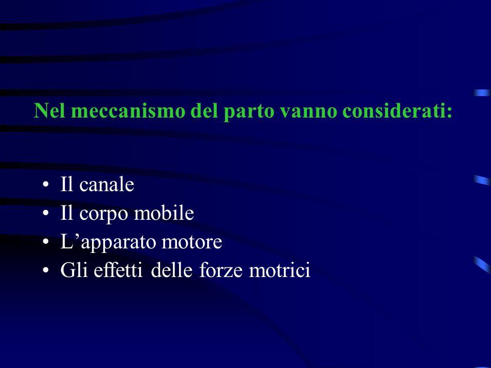 Lapparato motore Il canale Nel meccanismo del parto vanno considerati: Il corpo mobile Gli effetti delle forze motrici