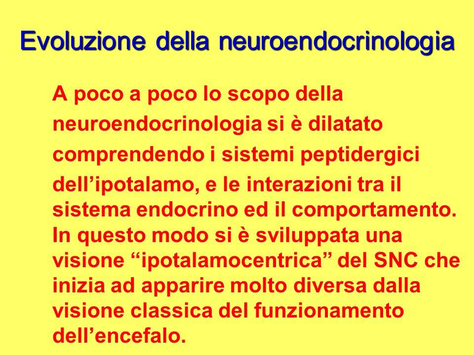 Evoluzione della neuroendocrinologia A poco a poco lo scopo della neuroendocrinologia si è dilatato comprendendo i sistemi peptidergici dellipotalamo,