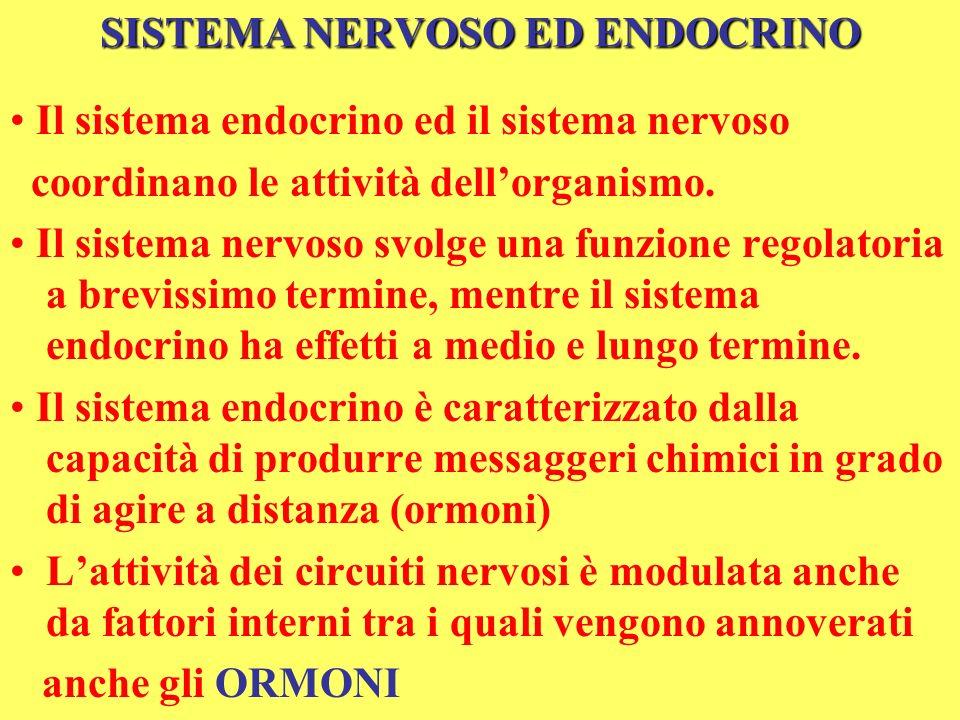 SISTEMA NERVOSO ED ENDOCRINO Il sistema endocrino ed il sistema nervoso coordinano le attività dellorganismo. Il sistema nervoso svolge una funzione r