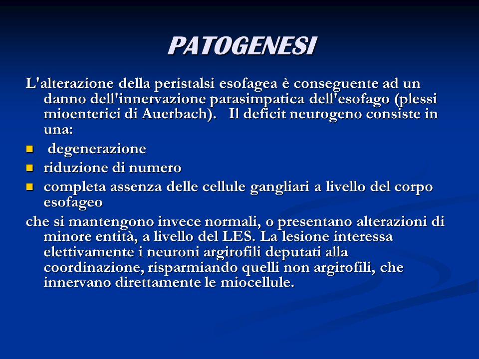 PATOGENESI L'alterazione della peristalsi esofagea è conseguente ad un danno dell'innervazione parasimpatica dell'esofago (plessi mioenterici di Auerb