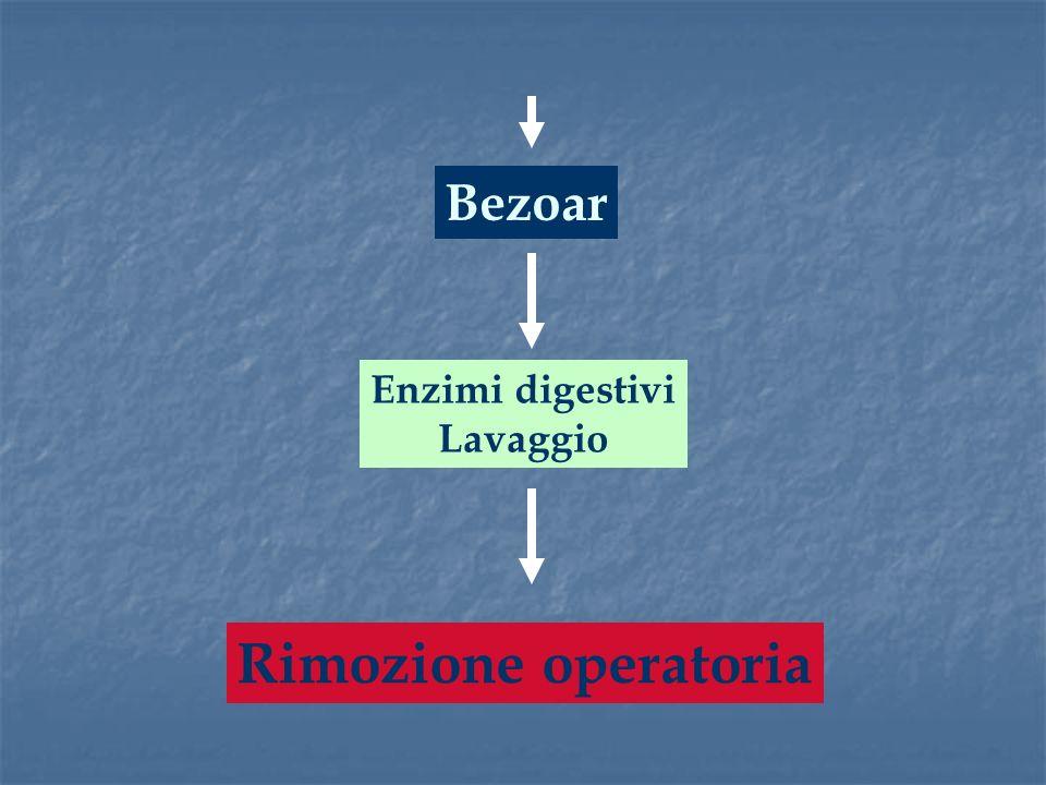 Bezoar Enzimi digestivi Lavaggio Rimozione operatoria