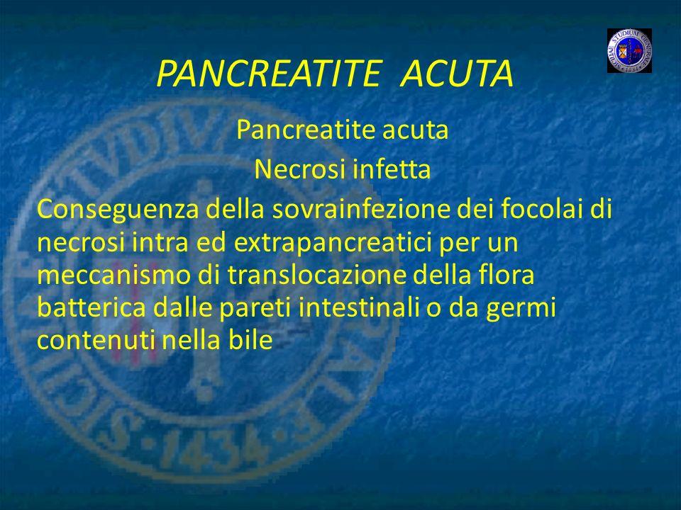 PANCREATITE ACUTA Pancreatite acuta Necrosi infetta Conseguenza della sovrainfezione dei focolai di necrosi intra ed extrapancreatici per un meccanism