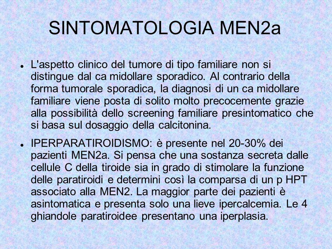 SINTOMATOLOGIA MEN2a L'aspetto clinico del tumore di tipo familiare non si distingue dal ca midollare sporadico. Al contrario della forma tumorale spo