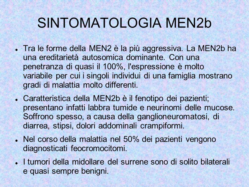 SINTOMATOLOGIA MEN2b Tra le forme della MEN2 è la più aggressiva. La MEN2b ha una ereditarietà autosomica dominante. Con una penetranza di quasi il 10