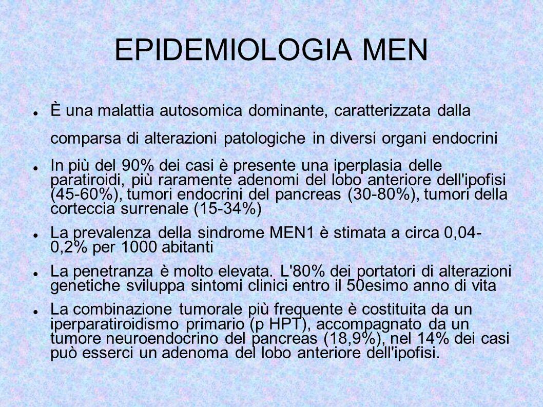 EPIDEMIOLOGIA MEN È una malattia autosomica dominante, caratterizzata dalla comparsa di alterazioni patologiche in diversi organi endocrini In più del 90% dei casi è presente una iperplasia delle paratiroidi, più raramente adenomi del lobo anteriore dell ipofisi (45-60%), tumori endocrini del pancreas (30-80%), tumori della corteccia surrenale (15-34%) La prevalenza della sindrome MEN1 è stimata a circa 0,04- 0,2% per 1000 abitanti La penetranza è molto elevata.