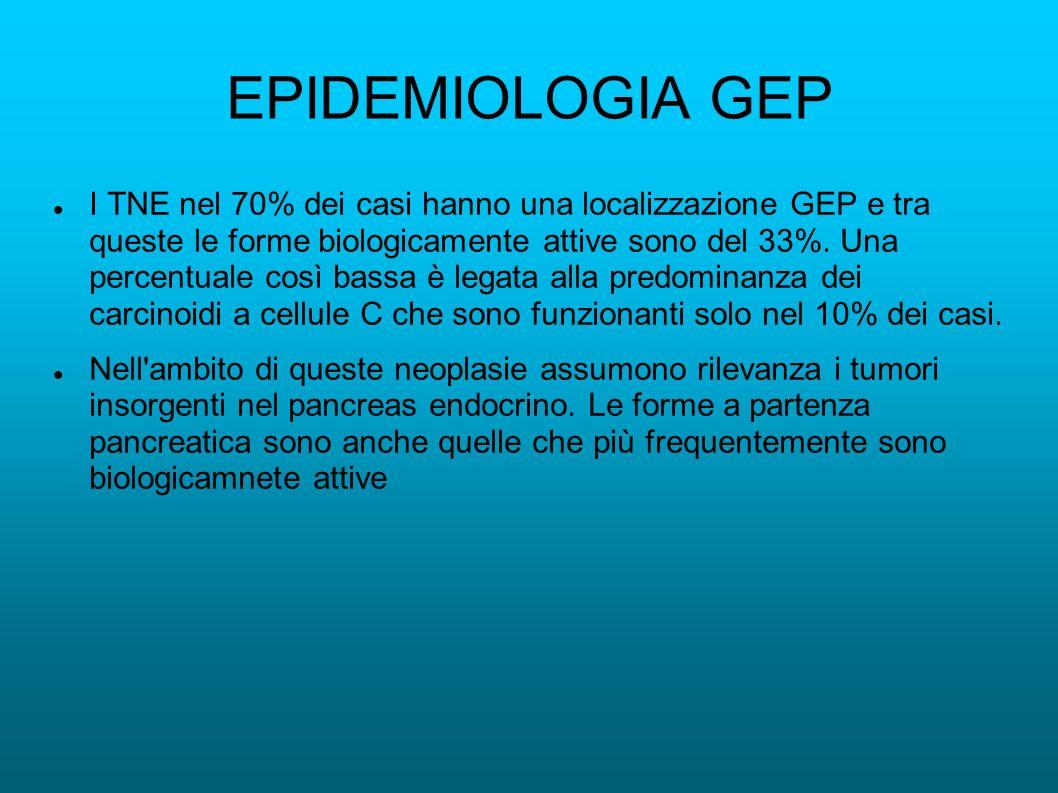EPIDEMIOLOGIA GEP I TNE nel 70% dei casi hanno una localizzazione GEP e tra queste le forme biologicamente attive sono del 33%. Una percentuale così b