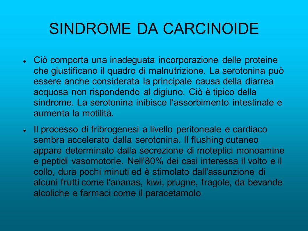 SINDROME DA CARCINOIDE Ciò comporta una inadeguata incorporazione delle proteine che giustificano il quadro di malnutrizione. La serotonina può essere