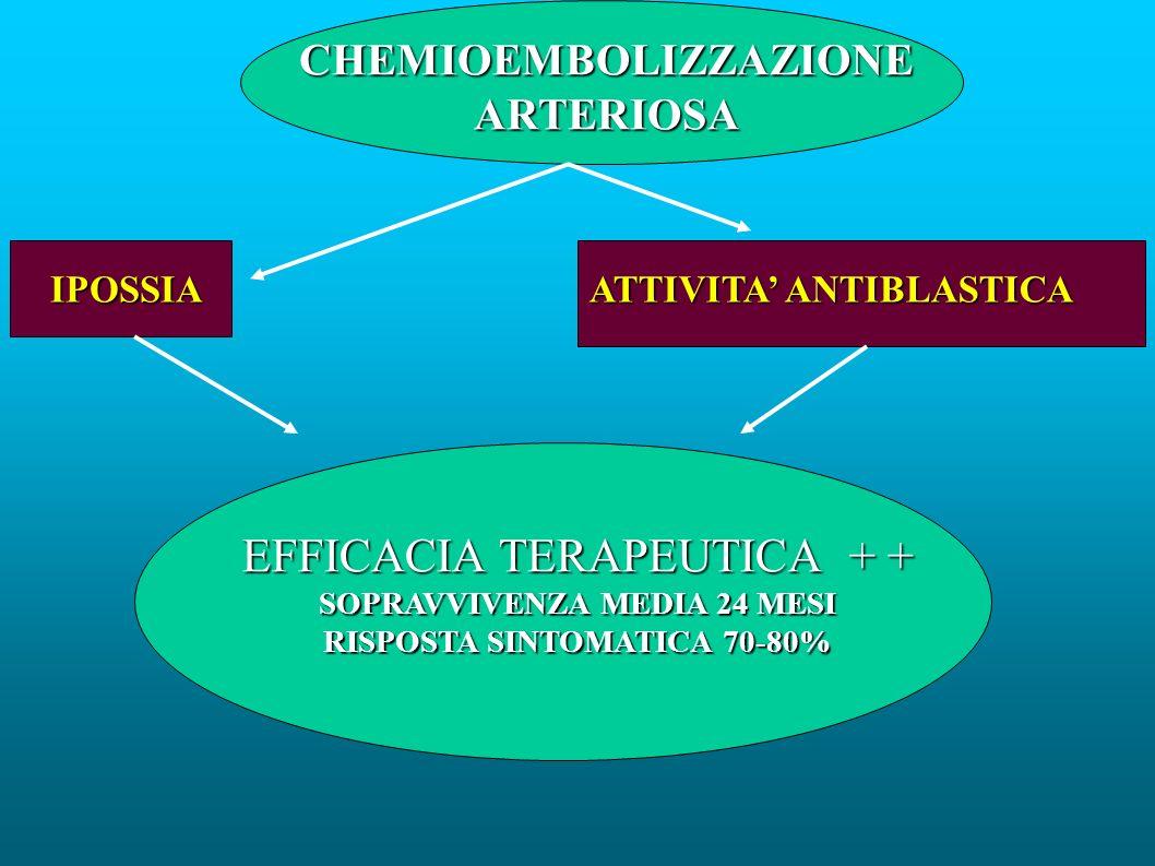 CHEMIOEMBOLIZZAZIONE ARTERIOSA IPOSSIA ATTIVITA ANTIBLASTICA EFFICACIA TERAPEUTICA + + SOPRAVVIVENZA MEDIA 24 MESI RISPOSTA SINTOMATICA 70-80%