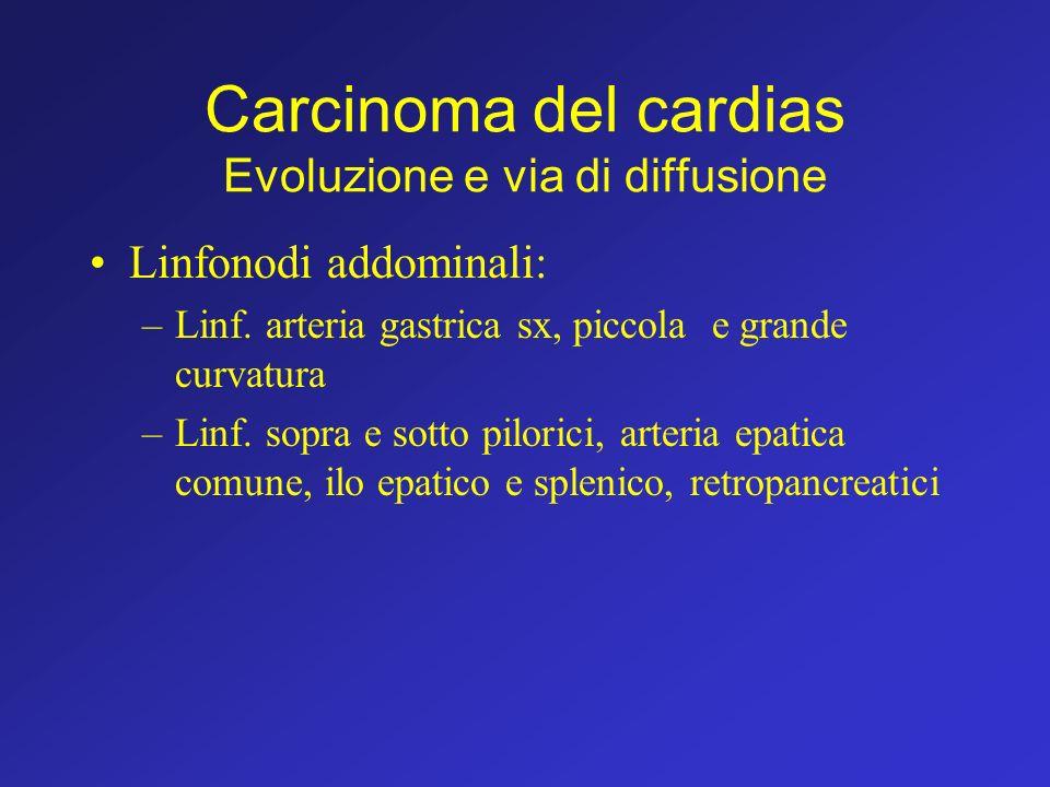 Carcinoma del cardias Evoluzione e via di diffusione Linfonodi addominali: –Linf. arteria gastrica sx, piccola e grande curvatura –Linf. sopra e sotto