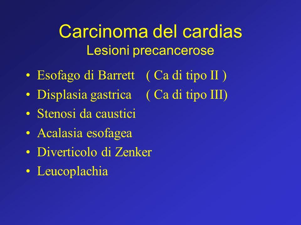 Carcinoma del cardias Lesioni precancerose Esofago di Barrett ( Ca di tipo II ) Displasia gastrica( Ca di tipo III) Stenosi da caustici Acalasia esofa