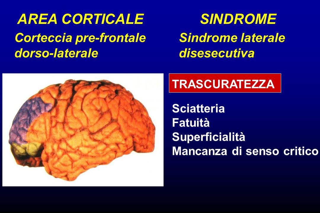 Corteccia pre-frontale dorso-laterale Sindrome laterale disesecutiva AREA CORTICALESINDROME TRASCURATEZZA Sciatteria Fatuità Superficialità Mancanza d