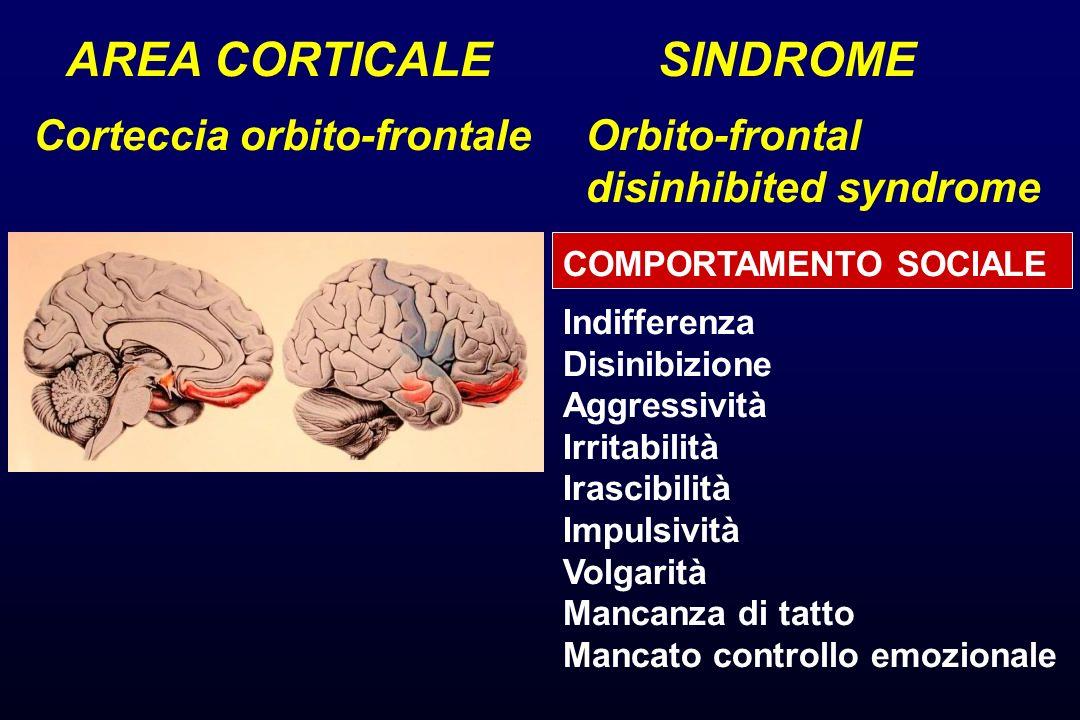 AREA CORTICALE Corteccia orbito-frontale SINDROME Orbito-frontal disinhibited syndrome COMPORTAMENTO SOCIALE Indifferenza Disinibizione Aggressività I