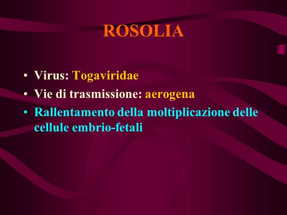 ROSOLIA Virus: Togaviridae Vie di trasmissione: aerogena Rallentamento della moltiplicazione delle cellule embrio-fetali
