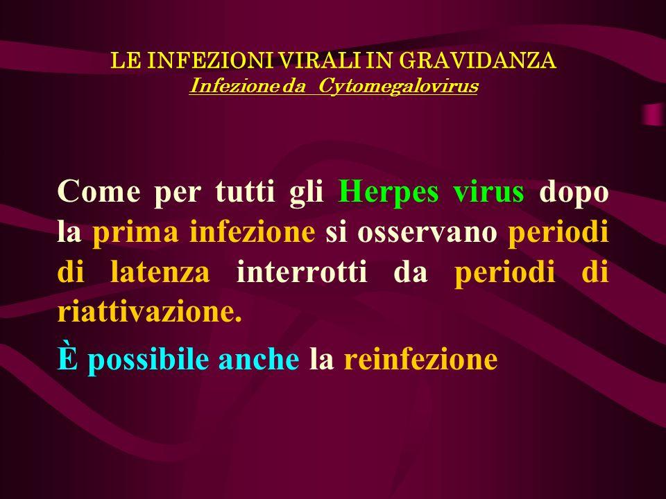 LE INFEZIONI VIRALI IN GRAVIDANZA Infezione da Cytomegalovirus Come per tutti gli Herpes virus dopo la prima infezione si osservano periodi di latenza