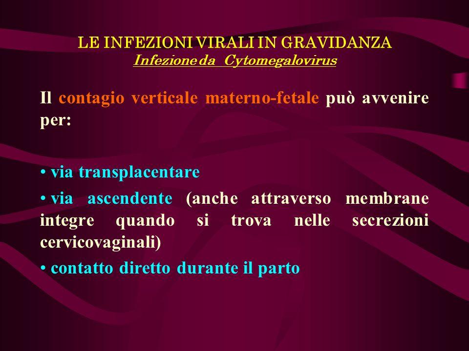 LE INFEZIONI VIRALI IN GRAVIDANZA Infezione da Cytomegalovirus Il contagio verticale materno-fetale può avvenire per: via transplacentare via ascenden