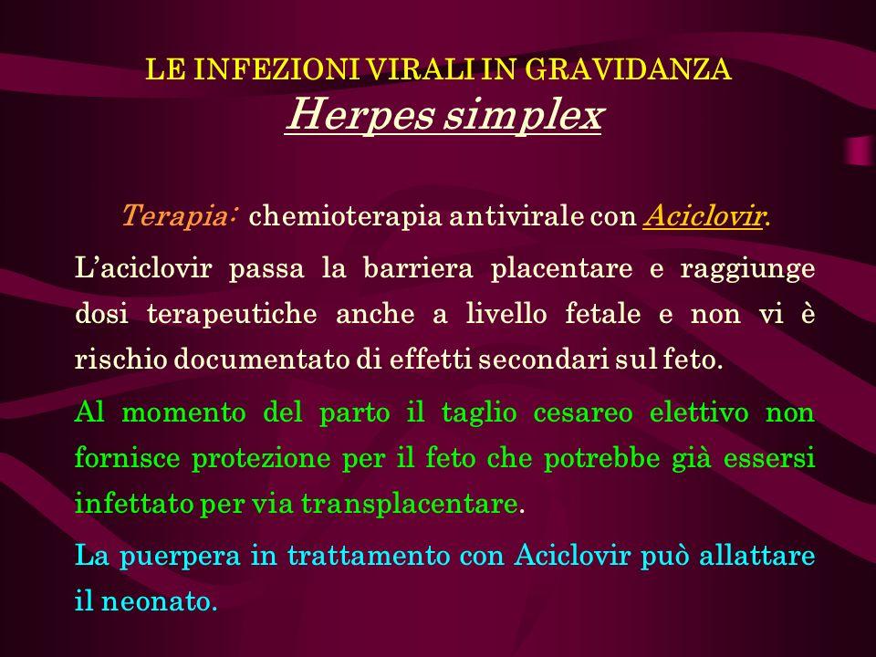 LE INFEZIONI VIRALI IN GRAVIDANZA Herpes simplex Terapia: chemioterapia antivirale con Aciclovir. Laciclovir passa la barriera placentare e raggiunge