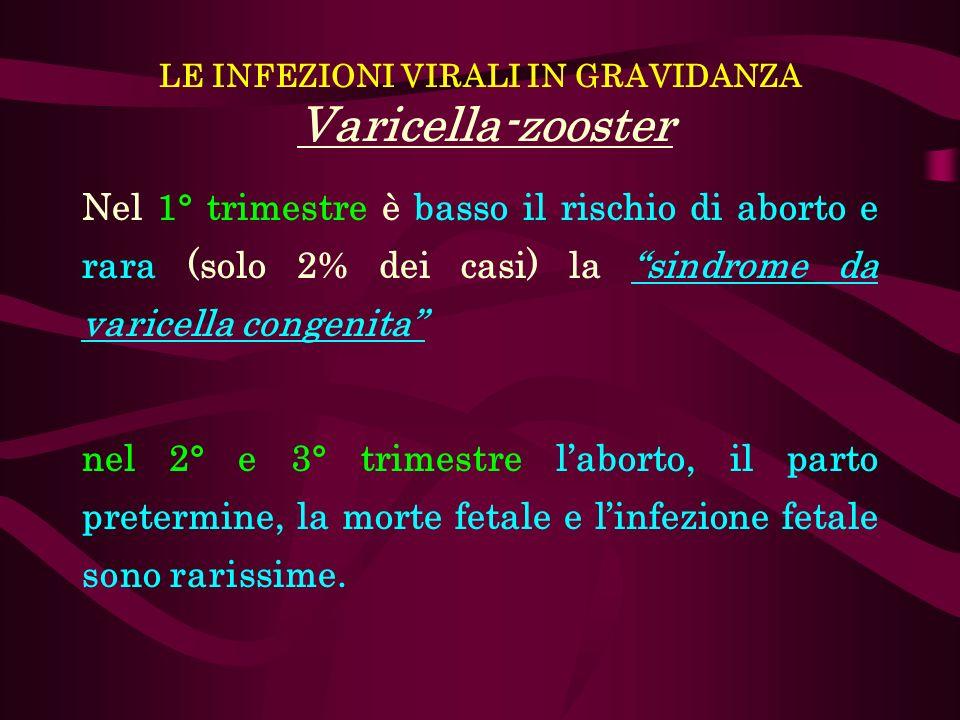LE INFEZIONI VIRALI IN GRAVIDANZA Varicella-zooster Nel 1° trimestre è basso il rischio di aborto e rara (solo 2% dei casi) la sindrome da varicella c