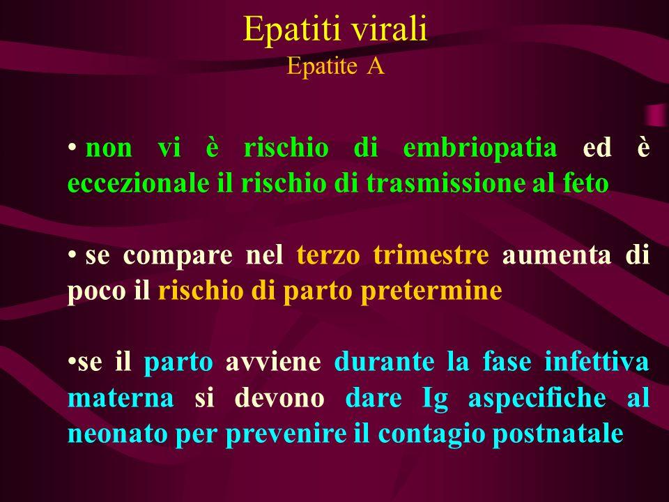 Epatiti virali Epatite A non vi è rischio di embriopatia ed è eccezionale il rischio di trasmissione al feto se compare nel terzo trimestre aumenta di