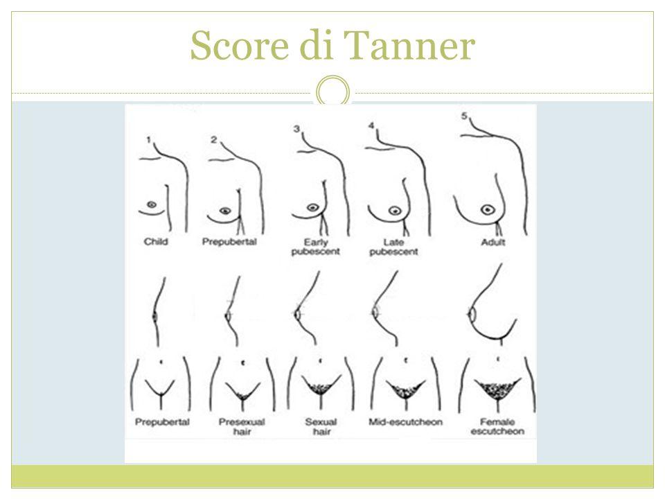 Score di Tanner
