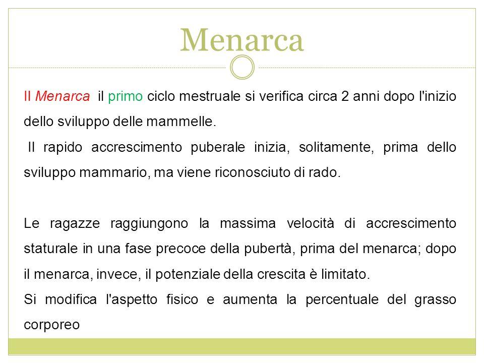Menarca Il Menarca il primo ciclo mestruale si verifica circa 2 anni dopo l'inizio dello sviluppo delle mammelle. Il rapido accrescimento puberale ini