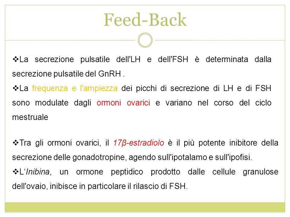 Feed-Back La secrezione pulsatile dell'LH e dell'FSH è determinata dalla secrezione pulsatile del GnRH. La frequenza e l'ampiezza dei picchi di secrez