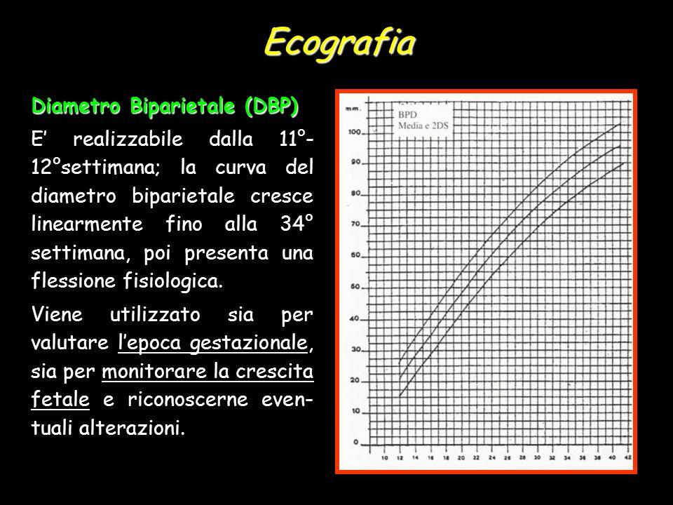 Ecografia Diametro Biparietale (DBP) E realizzabile dalla 11°- 12°settimana; la curva del diametro biparietale cresce linearmente fino alla 34° settim