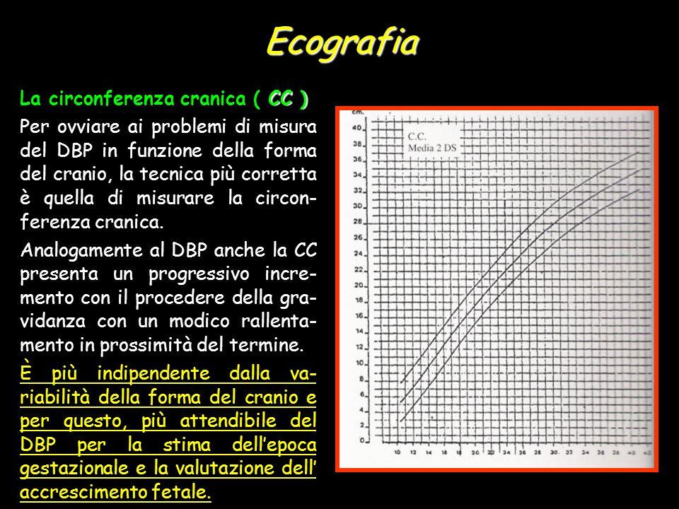 Ecografia CC ) La circonferenza cranica ( CC ) Per ovviare ai problemi di misura del DBP in funzione della forma del cranio, la tecnica più corretta è quella di misurare la circon- ferenza cranica.