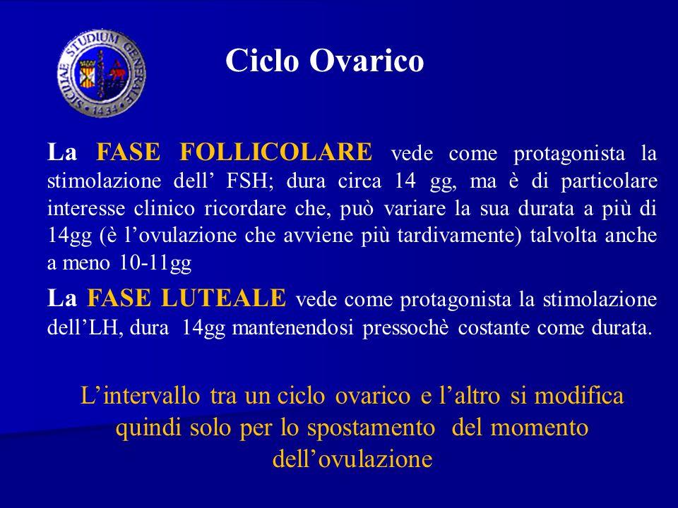 Ciclo Ovarico La FASE FOLLICOLARE vede come protagonista la stimolazione dell FSH; dura circa 14 gg, ma è di particolare interesse clinico ricordare c