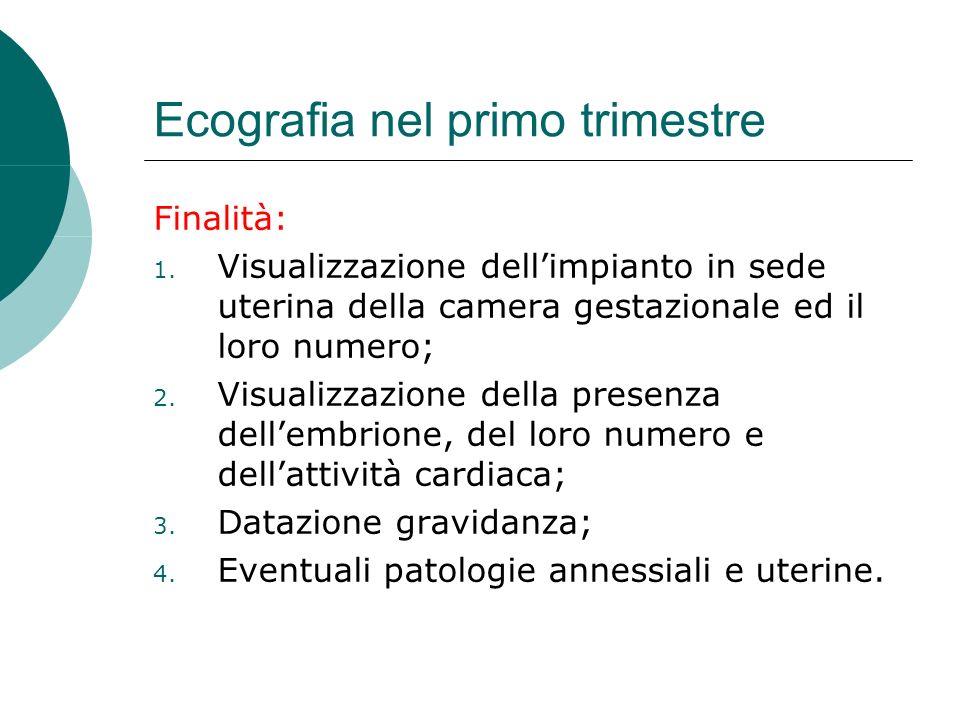 Ecografia nel primo trimestre Finalità: 1. Visualizzazione dellimpianto in sede uterina della camera gestazionale ed il loro numero; 2. Visualizzazion