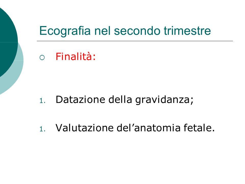 Ecografia nel secondo trimestre Finalità: 1. Datazione della gravidanza; 1. Valutazione delanatomia fetale.